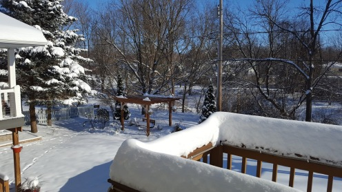Back deck winter