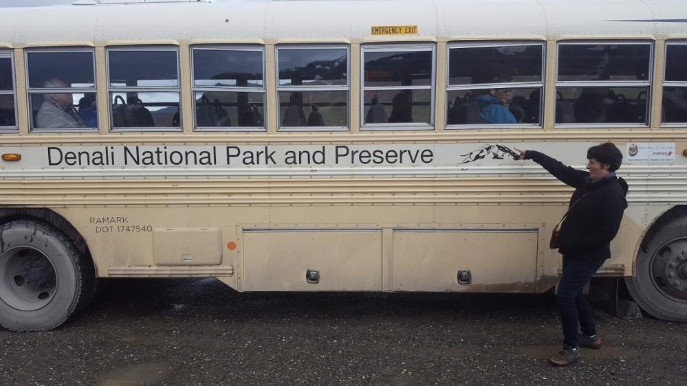 Denali buss